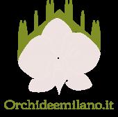 Orchidee Milano